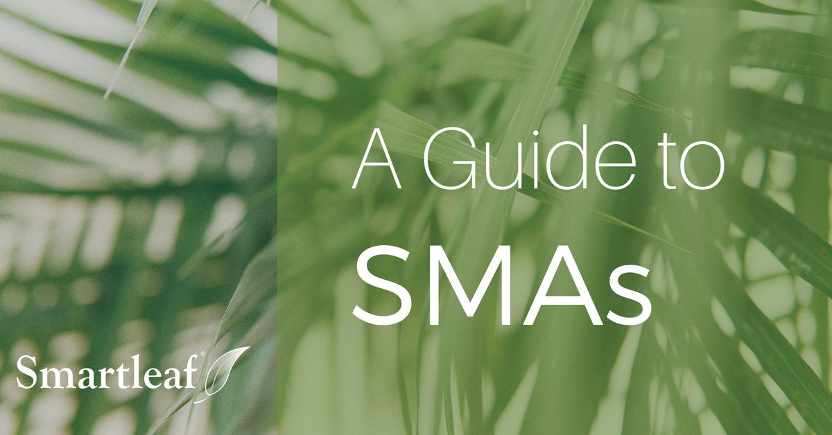 Video Image_ Guide to SMAs