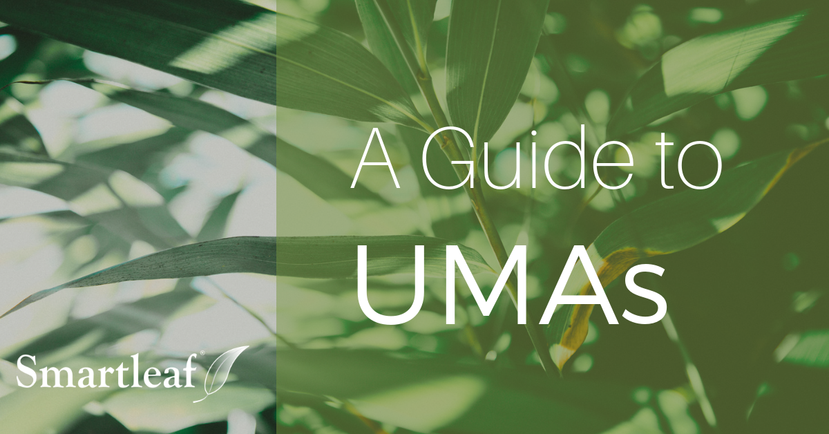 Video: A Guide to UMAs